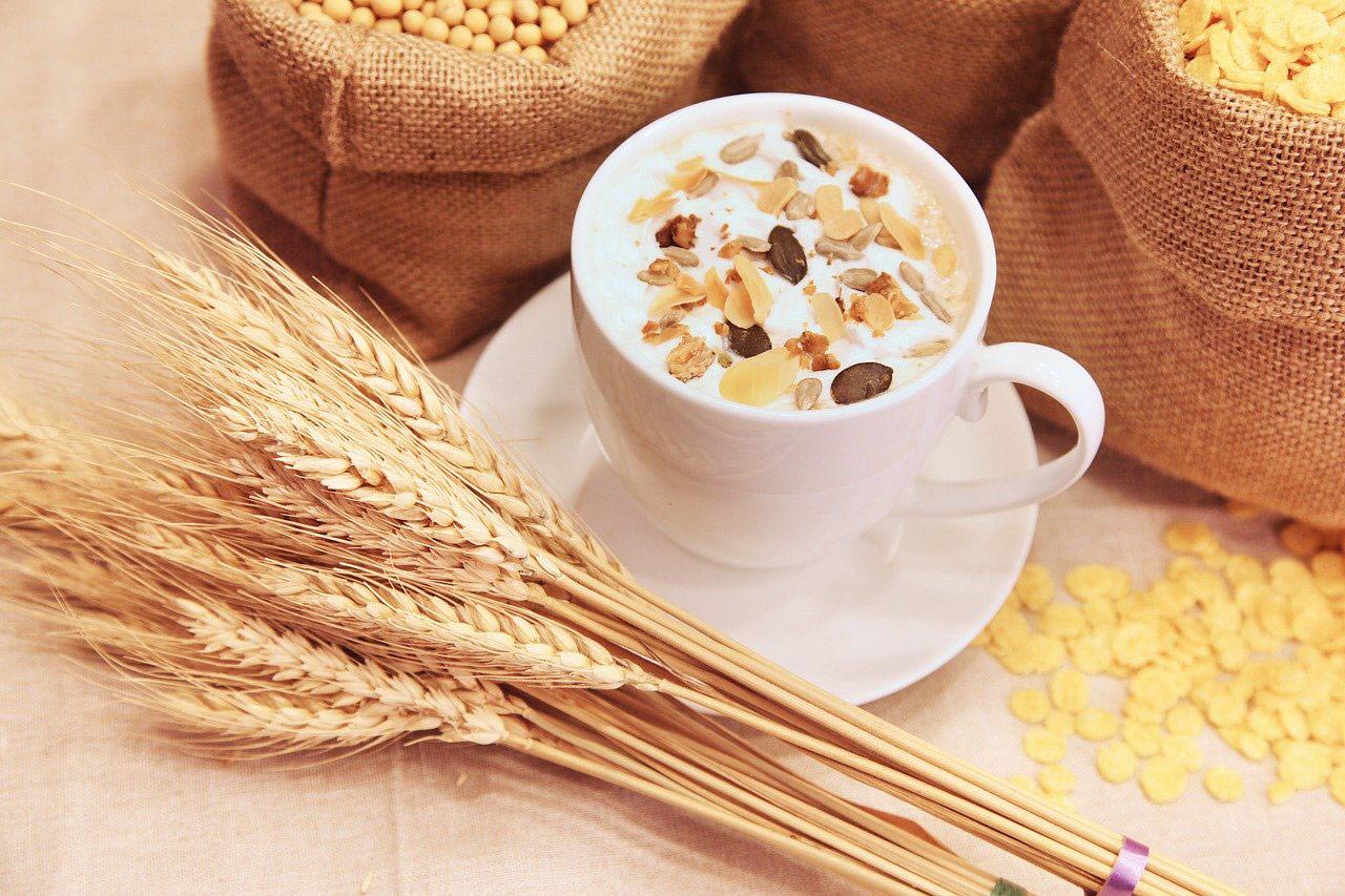 cereales trigo gluten