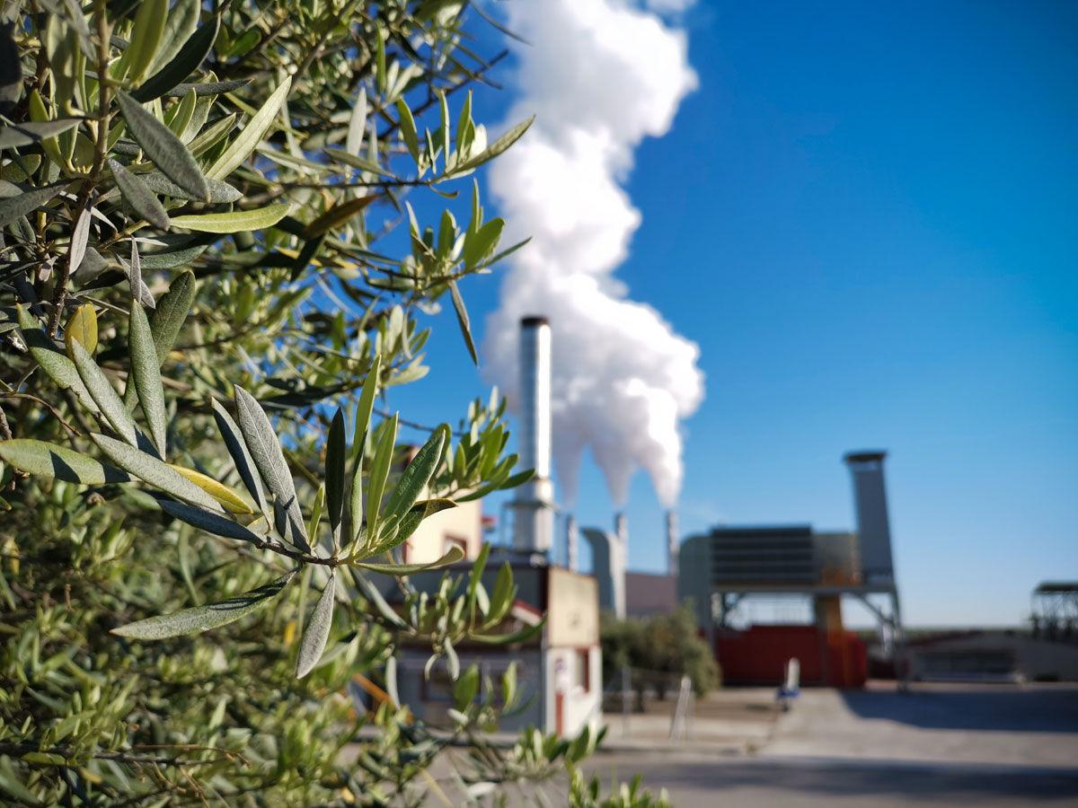 sostenibilidad energetica industria alimentaria